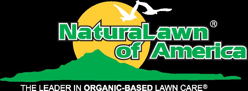 Flea and Tick Treatment Near Me: Organic Flea & Tick Control for Yard